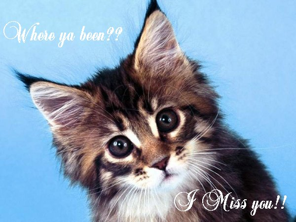 http://domania.us/BRATTROUBLE/CAT/I_MISS_YOU.jpg