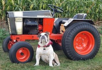 1972 Case 444 Demonstrator Tractor