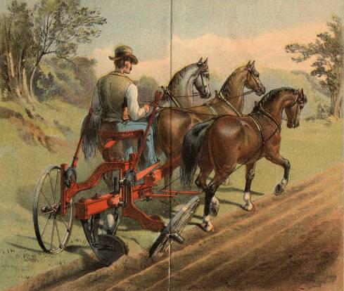 TTG Oliver Horses Chilled Plow
