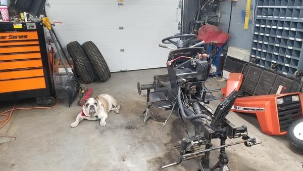 7b) 446 Case Garden Tractor Refurb 2021
