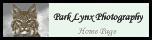 Park Lynx Photography Front Page